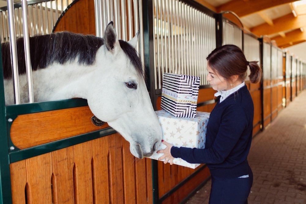 Bald ist Weihnachten - Geschenkideen für Pferd & Reiter